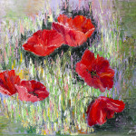 poppies_new_big_correct1_medium